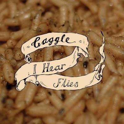 "I Hear Flies - 7"""