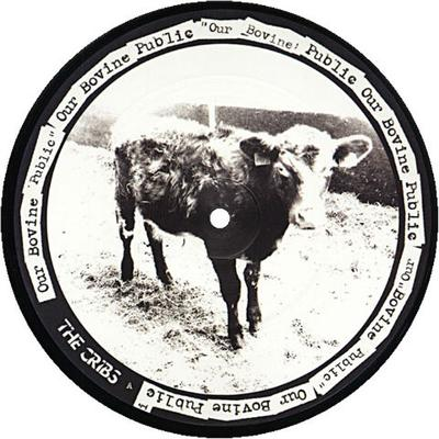 Our Bovine Public/Don't You Wanna Be Relevant 7""